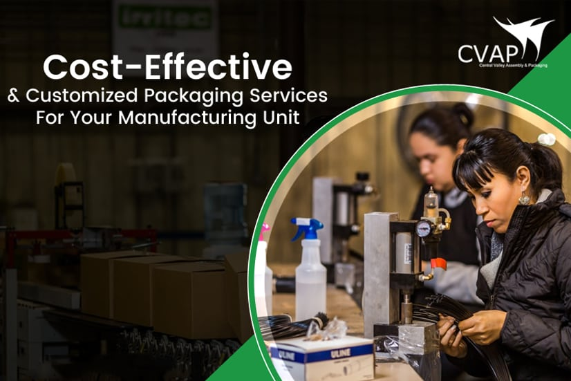 Cost Effective Packaging and Assembly Services for your Manufacturing Company